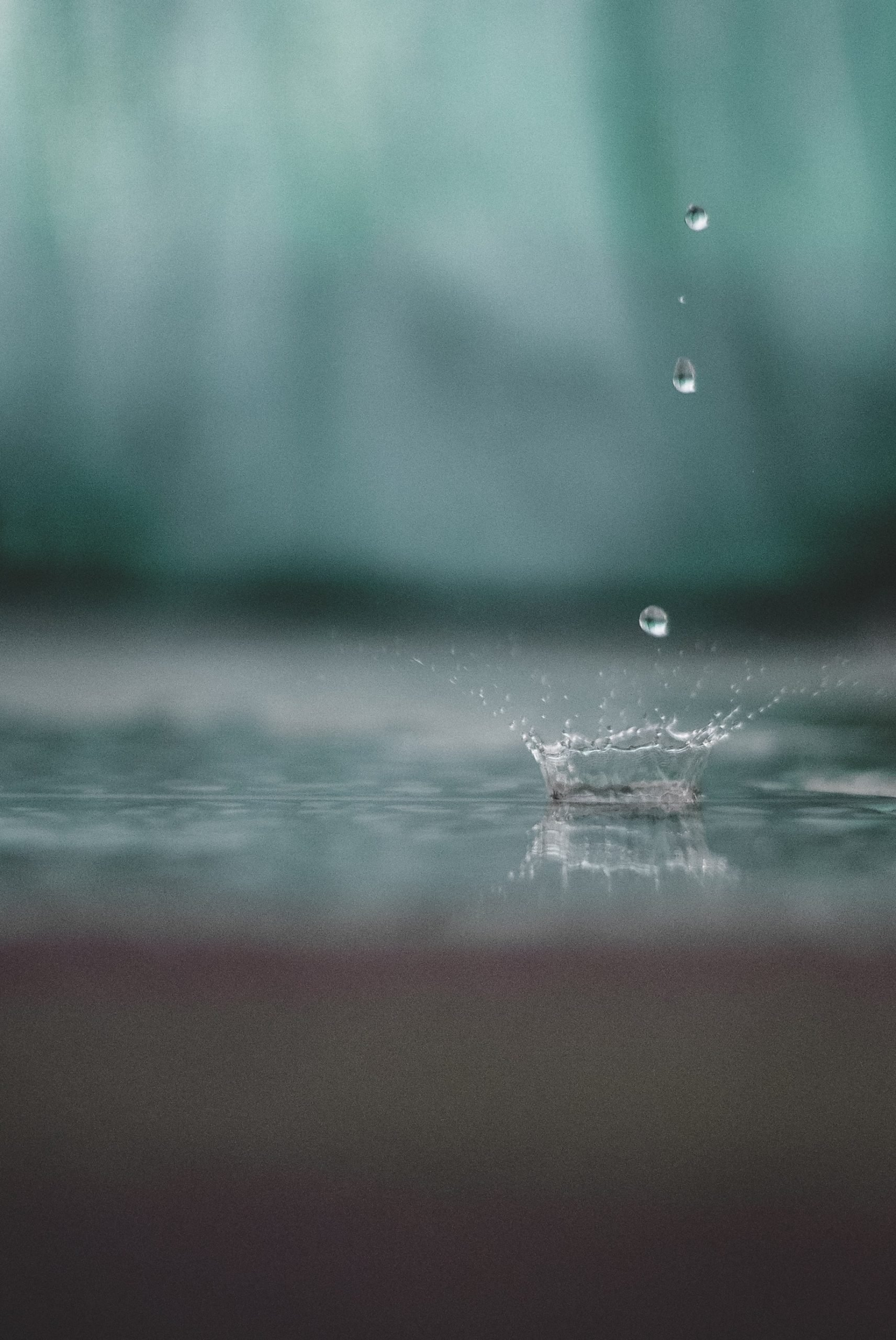 A Single Drop of Water